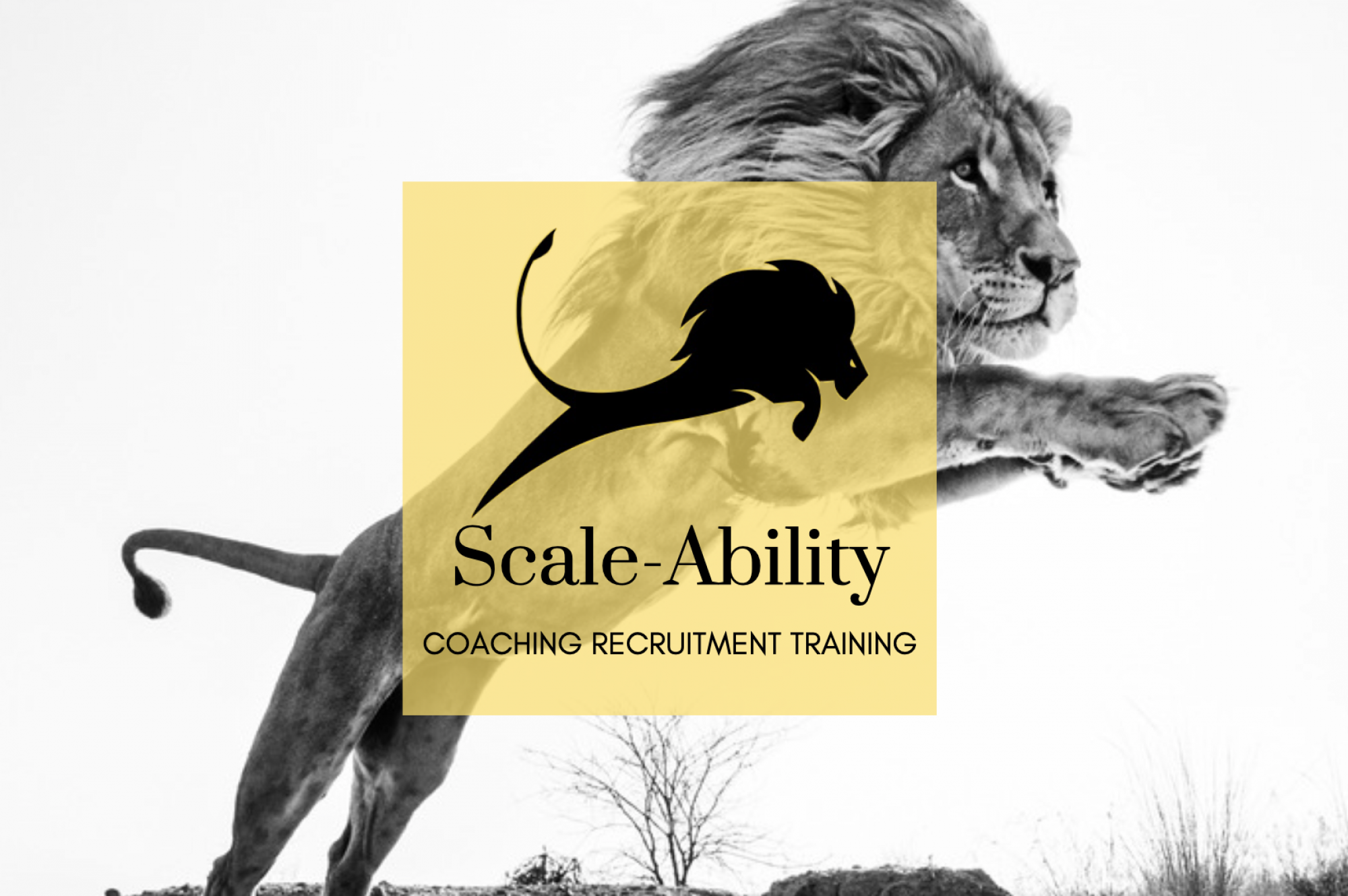 Scale-Ability